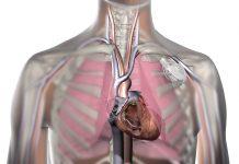 kalp atışları ile çalışan kalp pili