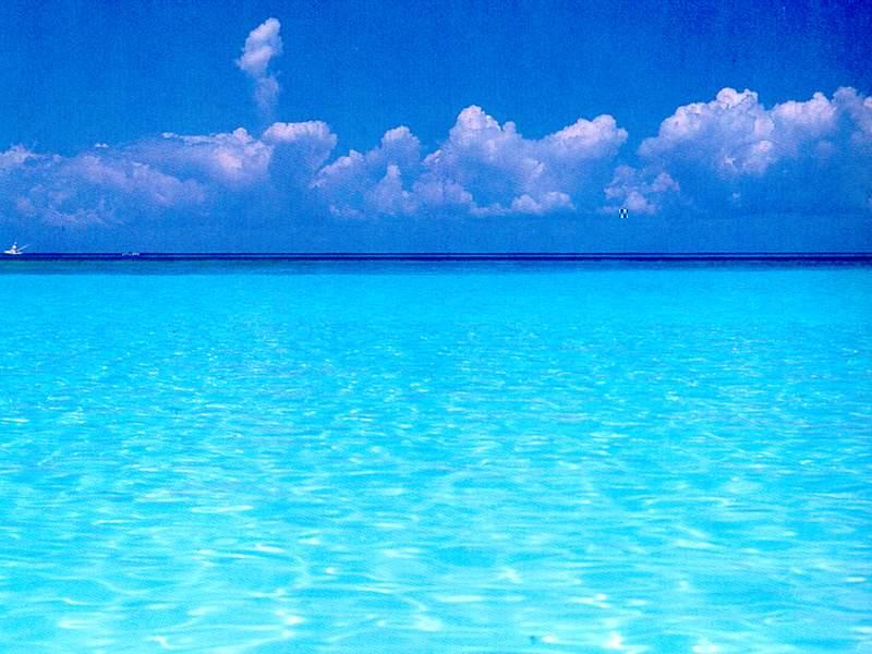 Deniz.jpg - 65.20 KB